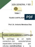 7- TEJIDO CARTILAGINOSO