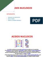 Mariana Solano Acidos Nucleicos
