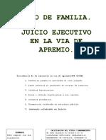 Ejecutivo en La via de Apremio de Familia.