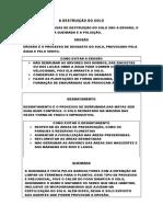 A DESTRUIÇÃO DO SOLO.docx