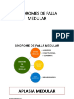 Sindromes de Falla Medular.pptx 1