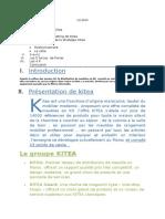 rapport kitea