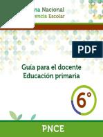 PNCE-DOCENTE-6-BAJA.pdf