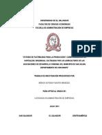 10137218.pdf