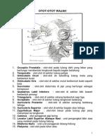Isometrik.pdf