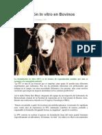 Fecundación In vitro en Bovinos.docx