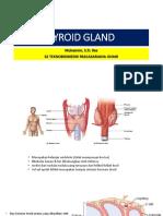 Tyroid Gland