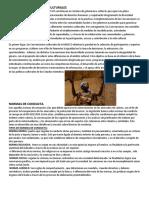 CONVERSIONES DE MODOS CULTURALES.docx