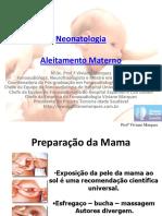 516-4-AMAMENTA----O-Orienta----es-no-Aleitamento-Materno.pdf