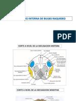 CORTES DE TRONCO.pptx