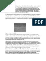 geomorfo tunala.docx