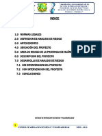 ESTUDIO DE MITIGACION DE RIESGO.docx
