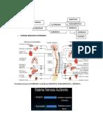 Sistema Nevioso Farmacología.docx
