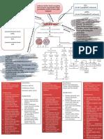 Mind Map Leukemia Pada Anak Fix