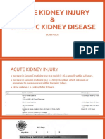 Acute Kidney Injury (1).pptx