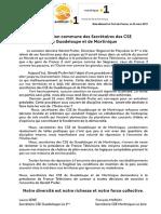 Cse-Declaration Commune Des Secretaires Des Cse de Guadeloupe Et de Martinque (2)
