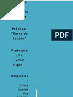 Practica-Curva-de-secado (2).docx