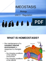 HomeostasisFeedbackMechanisms (1).ppt