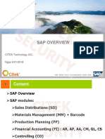SAP_Overview_V1.0.pdf