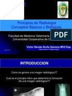 02_Principios_Biofísicos.pdf
