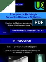 02_Principios_Biofísicos
