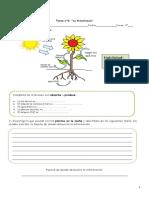 3°-Tarea-n°2-La-fotosíntesis-rev-17-y-19-de-abril.pdf