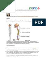 Hernia discal.docx