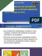 06 Causa de Los Accidentes - Factor Ambiental