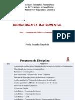 HISTORICOS E FUNDAMENTOS DE CROMATOGRAFIA.ppt