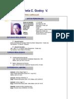 Síntesis de Los Documentos Del Concilio Plenario Desbloqueado