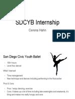 sdcyb internship