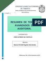 TOPICOS RESUMEN.docx