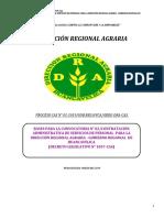 BASES CAS 002-2019 DRA-HVCA.pdf