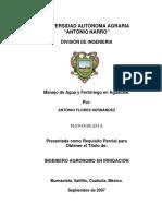 T16479 FLORES HERNÁNDEZ, ANTONIO  MON.pdf
