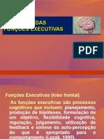 6-Avaliação Das Funções Executivas-módulo - i - 2007
