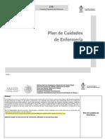 6 FORMATO PLACE OFICIAL datos sobre SÍNTESIS.docx