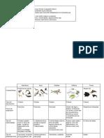 Guia de Vertebrados e Invertebrados