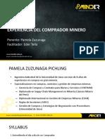 Diapositivas Experiencia Del Comprador Minero (1)