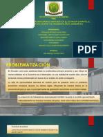 Diapositivas Pis
