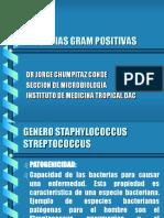 1.0.0-Gram_positivos