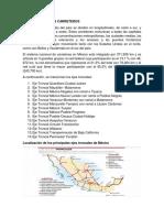 14 EJES TRONCALES CARRETEROS.docx