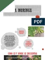 moringa 1.pptx