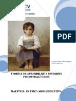 MODULO_TEORIA_APREND_Y_ENF_PSICOPEDAGOGICOS.pdf