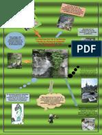 Infografia_Jorge_el_honorable.docx