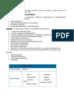 ESAVIEXPO.docx