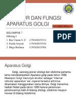 Stuktur Dan Fungsi Retikulum Aparatus Golgi by Kel. 7