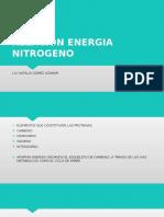 1.- Relacion Energia-nitrogeno
