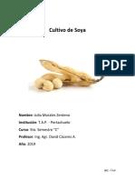 informe maiz soya y caña.docx