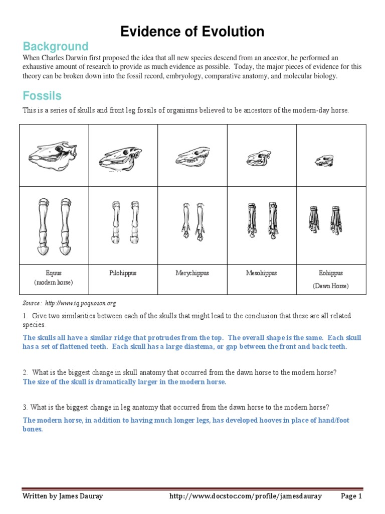 Organism Relationships Worksheet Packet Answer Key