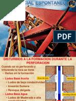 Registro-SP.pdf